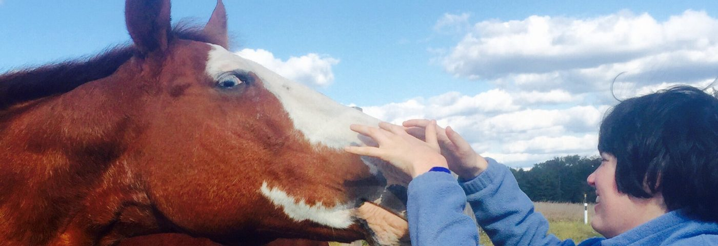 Making Friends, Plans, and Progress in Hippotherapy