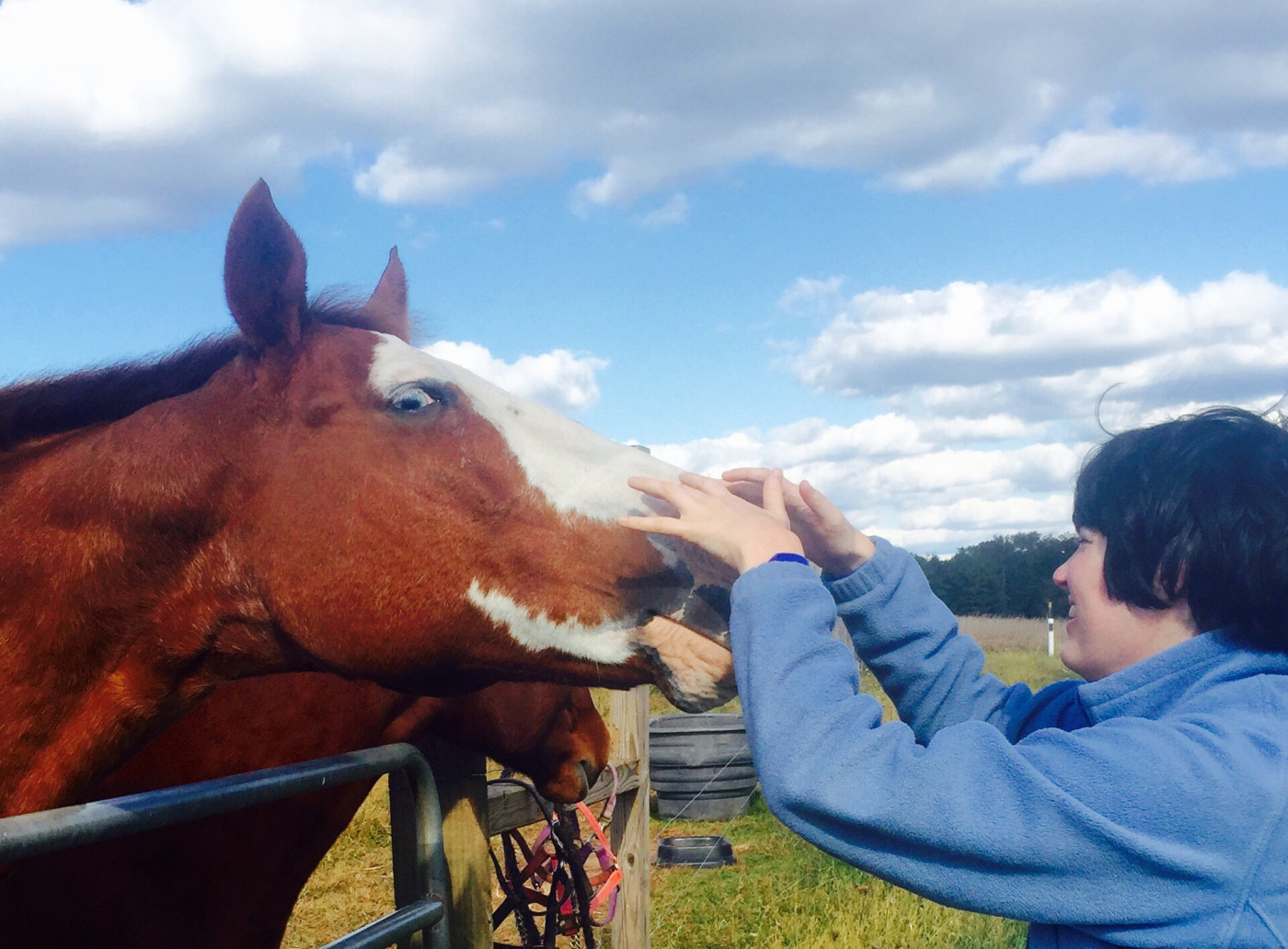 hippotherapy, planned life