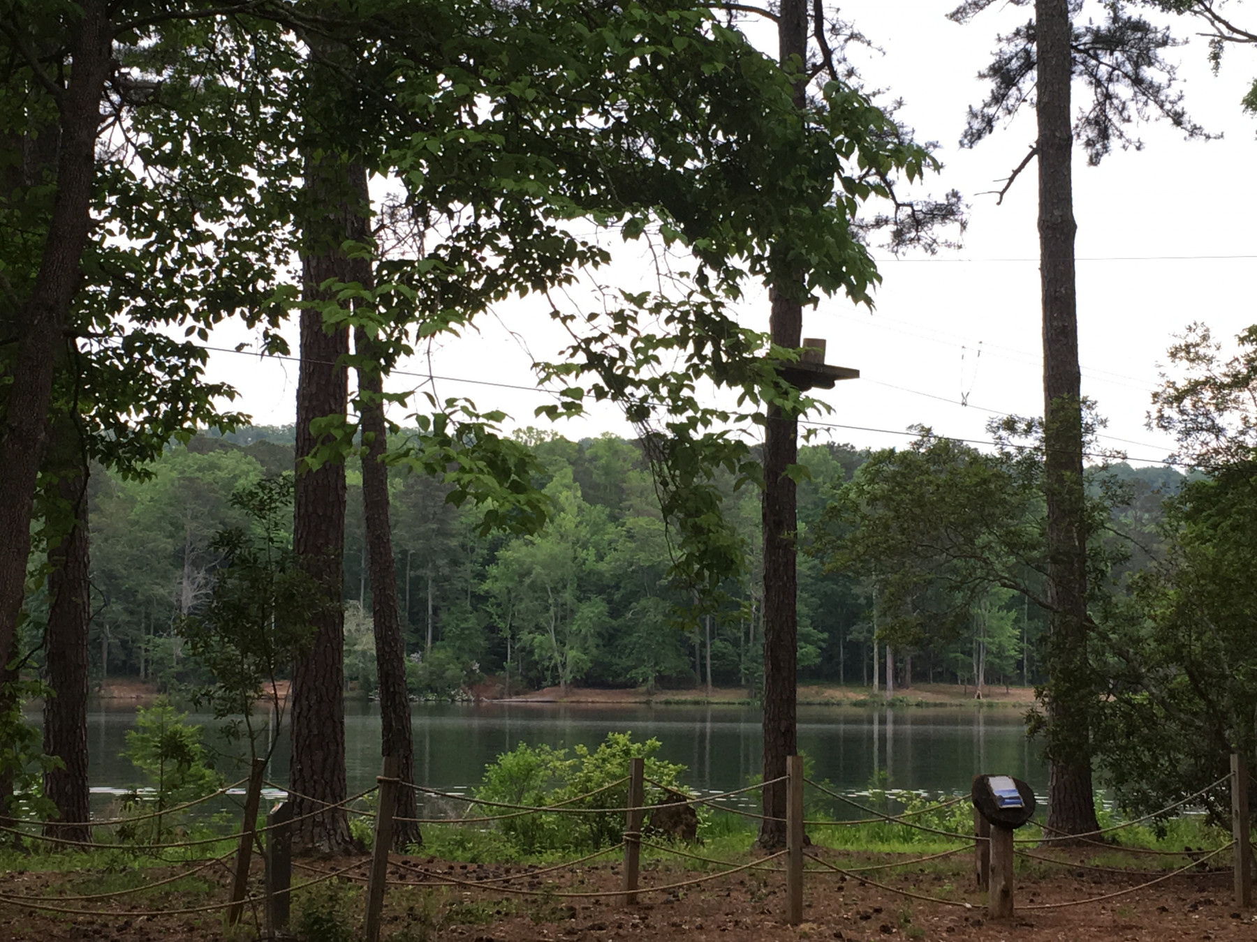 Staycations \ Angelman Syndrome News \ A tranquil nature scene at Callaway Gardens Resort and Gardens in Pine Mountain, Georgia.